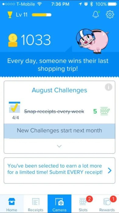 Receipt Hog App IOS Review