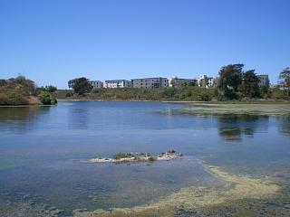 lagoons