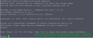 Logging into MySQL on database Kamailio