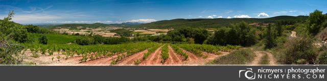 Panoramic of the Penedès Wine Region of Spain