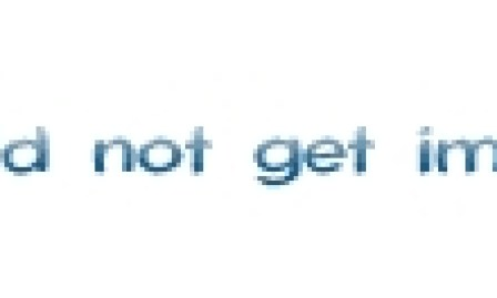Giraffe at the Cotswold Wildlife Park