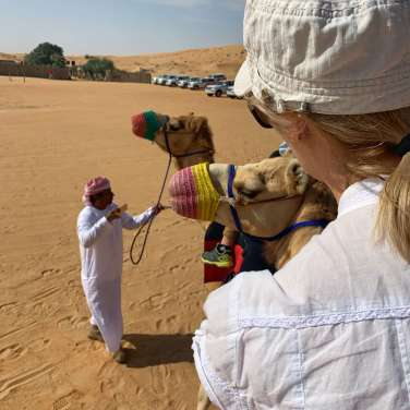 Camel riding in Dubai