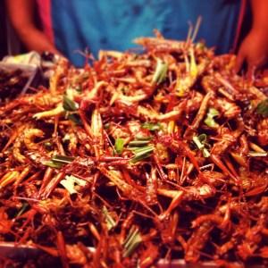 Strange street food in Bangkok, crickets!