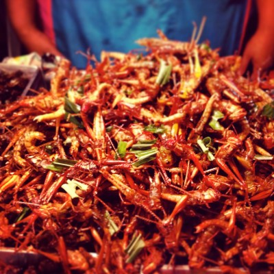 Strange street food in Bangkok, crickets!