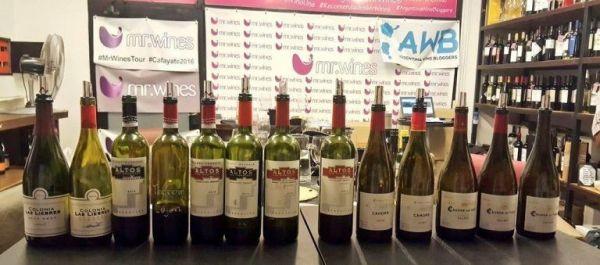 Vinos franceses de Altos Las Hormigas