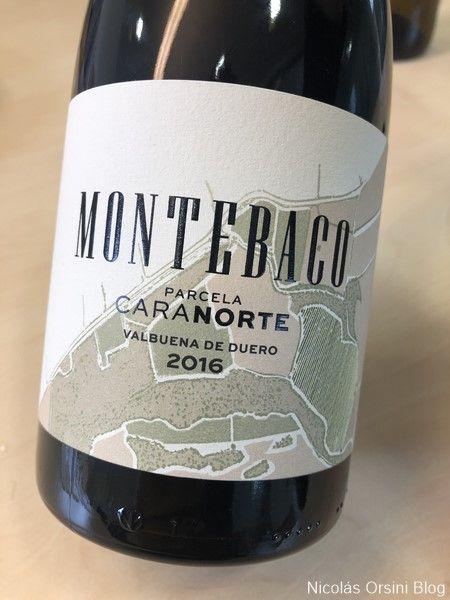 Montebaco Parcela Cara Norte 2016