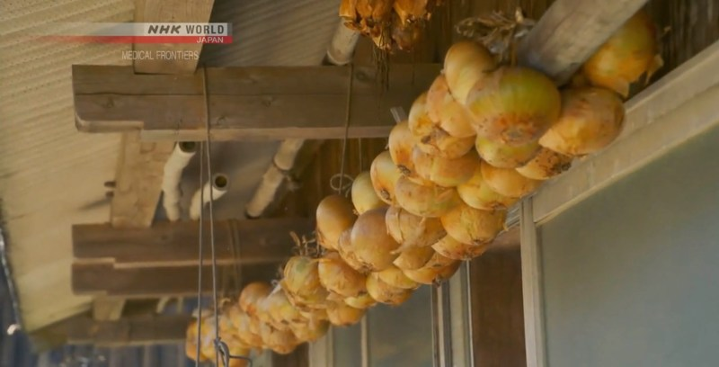 NHK Medical Frontiers - onion health benefits