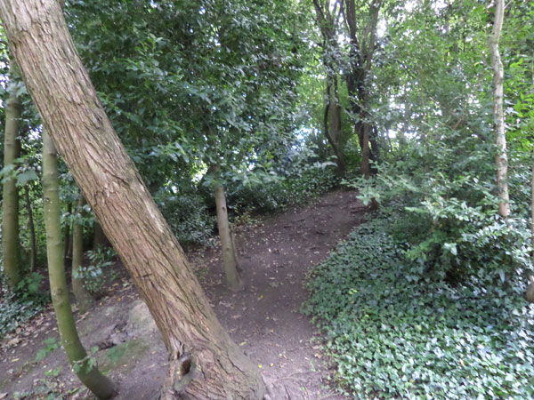Brunswick Park 7