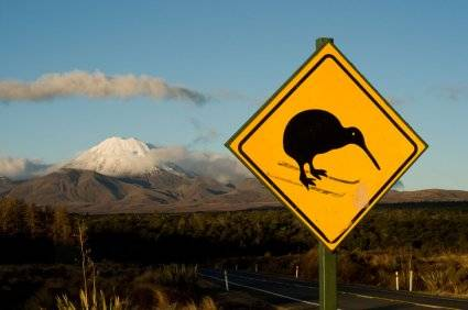 how to move to new zealand