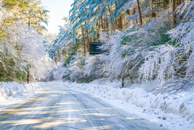 Icy road through trees covered in ice and snow