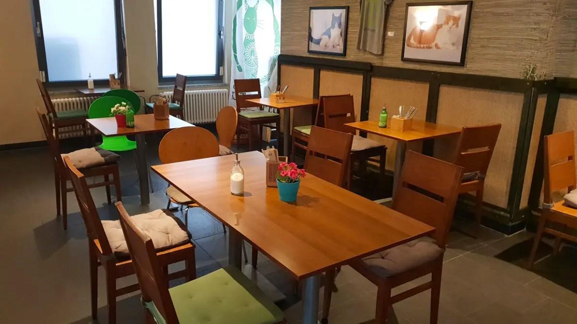 """best-cafes-munich-cafe-kat-tempel-inside """"width ="""" 1200 """"height ="""" 675 """"data-wp-pid ="""" 9465 """"srcset ="""" https://www.nicolos-reiseblog.de/wp-content/ uploads / 2018/12 / best-cafes-muenchen-café-katzentempel-innen-1.jpg 1200w, https://www.nicolos-reiseblog.de/wp-content/uploads/2018/12/besten-cafes-muenchen -cafe-katzentempel-innen-1-300x169.jpg 300w, https://www.nicolos-reiseblog.de/wp-content/uploads/2018/12/besten-cafes-muenchen-cafe-katzentempel-innen-1- 1024x576.jpg 1024w, https://www.nicolos-reiseblog.de/wp-content/uploads/2018/12/besten-cafes-muenchen-cafe-katzentempel-innen-1-800x450.jpg 800w, https: // www.nicolos-reiseblog.de/wp-content/uploads/2018/12/besten-cafes-muenchen-cafe-katzentempel-innen-1-300x169@2x.jpg 600w """"sizes ="""" (max-width: 1200px) 100vw , 1200 px """"/></p data-recalc-dims="""