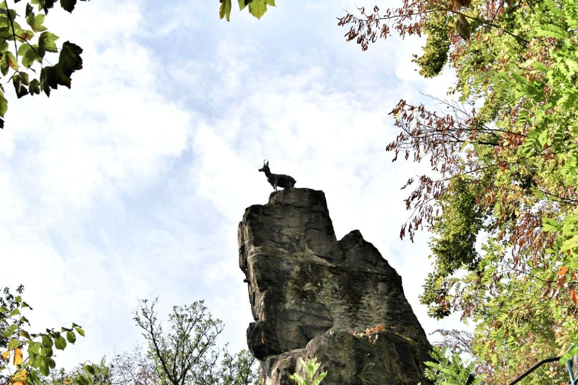 karlsbad-bezienswaardigheden-uitkijkplatform-herten springen
