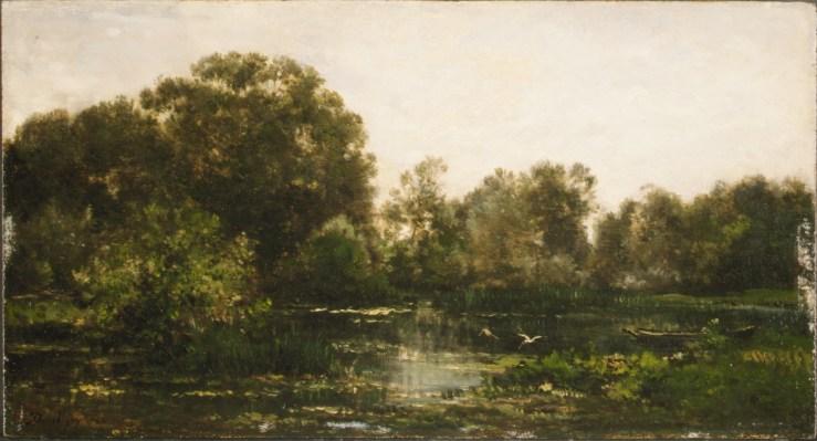 storks on a river