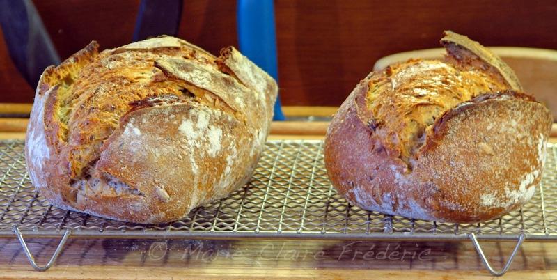 comment faire votre premier pain au levain ni cru ni cuit. Black Bedroom Furniture Sets. Home Design Ideas