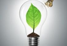 Energia odnawialna w PWSZ Niebywałe Suwałki