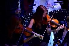 Orkiestrofania_2014_0009