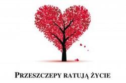 przeszczepy-ratuja_zycie