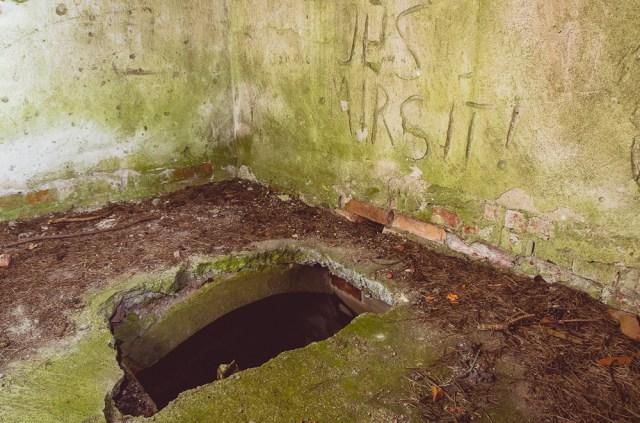 Skylė grindyse į rūsį su kriptomis