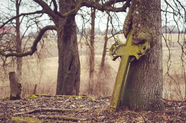 Ar medis išalko, ar kryžius pavargo?