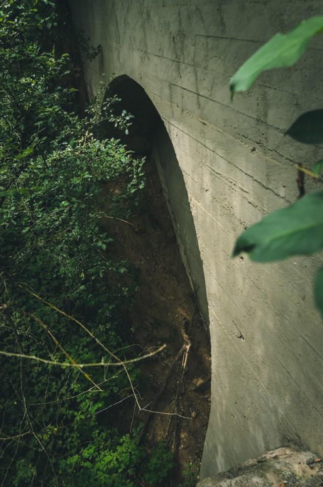 Dėl gausios augmenijos arkinius tilto tarpatramius galima apžiūrėti tik iš arti