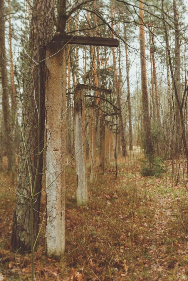Teritoriją, be abejo, juosė dygios vielos tvora