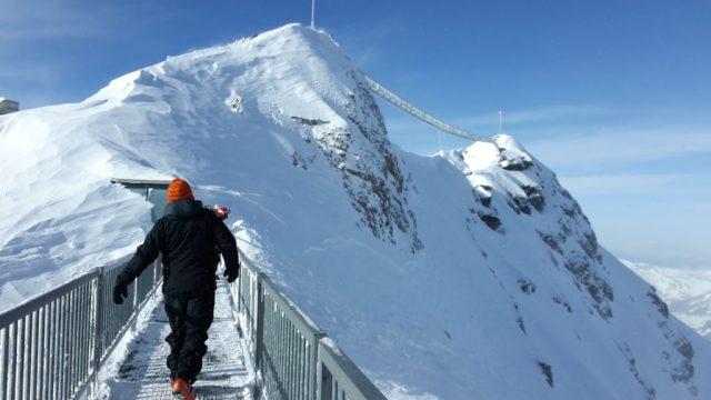 Las vistas sobre el puente Peak Walk aon inigualables