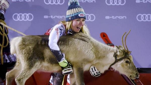 Mikaela Shiffrin posa junto al reno que cada año se llevan los ganadores en Levi. FOTO: Markku Ulander/AFP