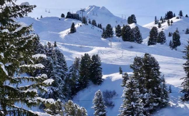 El esquiador de 12 años fue atrapado por una avalancha al salir fuera de la pista balizada