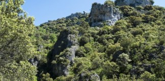 Cañón del río Ubagua (barranco de Arbioz)