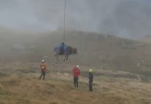 Vídeo del momento del rescate