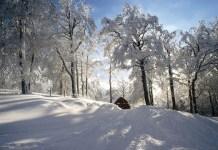 Iraty, la naturaleza en estado puro, en los Pirineos Atlánticos