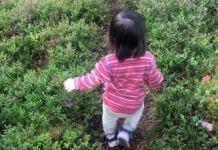 Maj se desvía del camino para coger los frutos silvestres