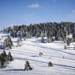 Casi una veintena de estaciones quieren levantar el telón a partir del 4 de diciembre