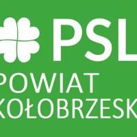 Robert Kołodziejczyk wykluczony z władz lokalnych PSL