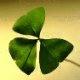 Irish Genealogical Toolkit