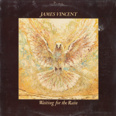 386  Waiting for the Rain – James Vincent | CCM's 500 Best