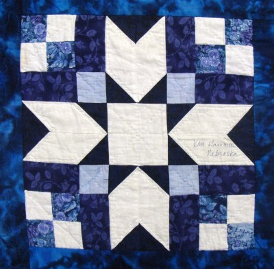 Nifty Fifty Quilters of America Ninth 50 State Quilt Block ...