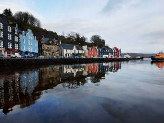 A Riot of Colour - Tobermory