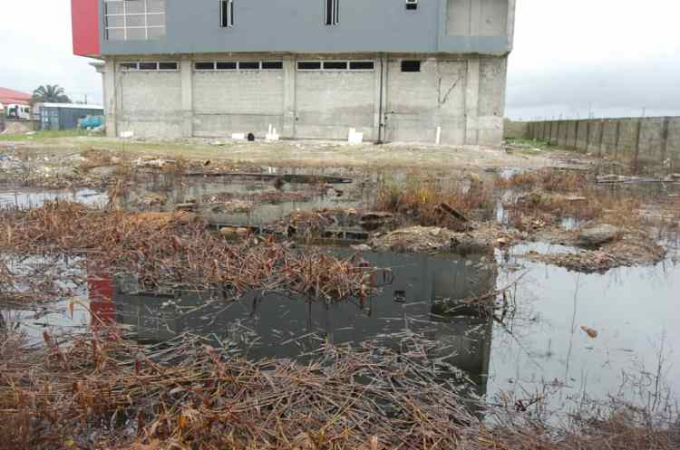 Scene of the crude oil spill at NigerCat in Ekpan, Delta State