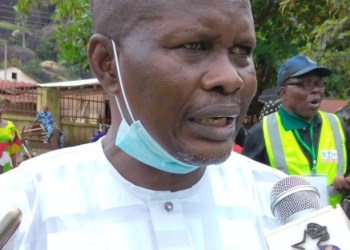 Engr. Ade Adetimehin, Ondo State APC Chairman