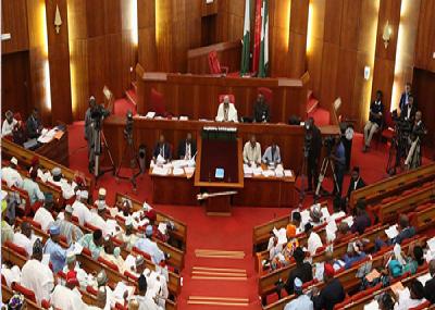 Image result for nigeria senate