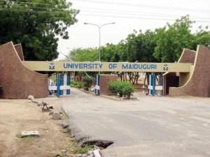 Image result for university of maiduguri