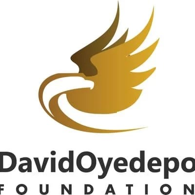 David Oyedepo Foundation Undergraduate Scholarships