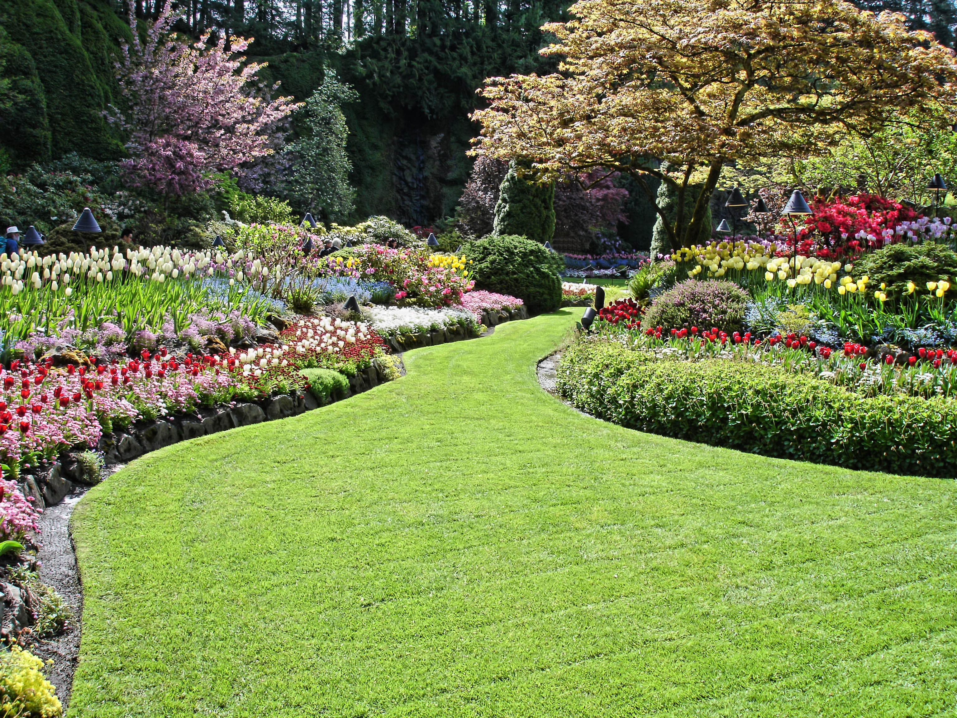 Why Contract A Landscaping Company Night Helper
