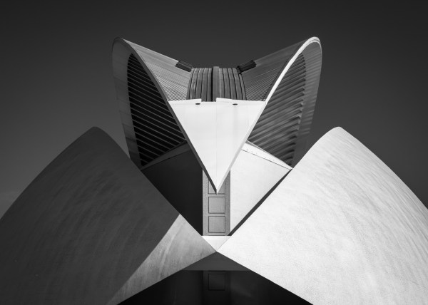 Advanced~Gary_McDavid~City_Of_Arts_And_Sciences_Valencia_Spain