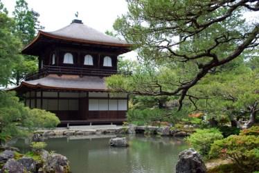 Le origini della Cha no yu la cerimonia del tè giapponese