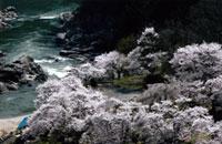 伝説の地パワースポットコースイメージ写真