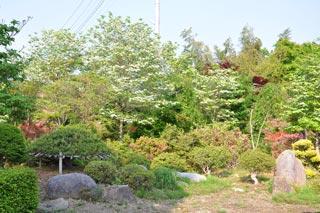 大稲場グリーンパークの写真6