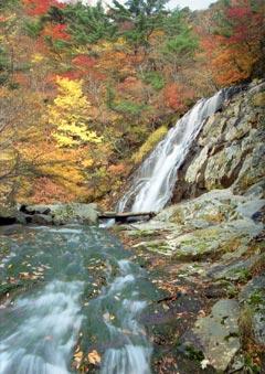 湯川渓谷の写真
