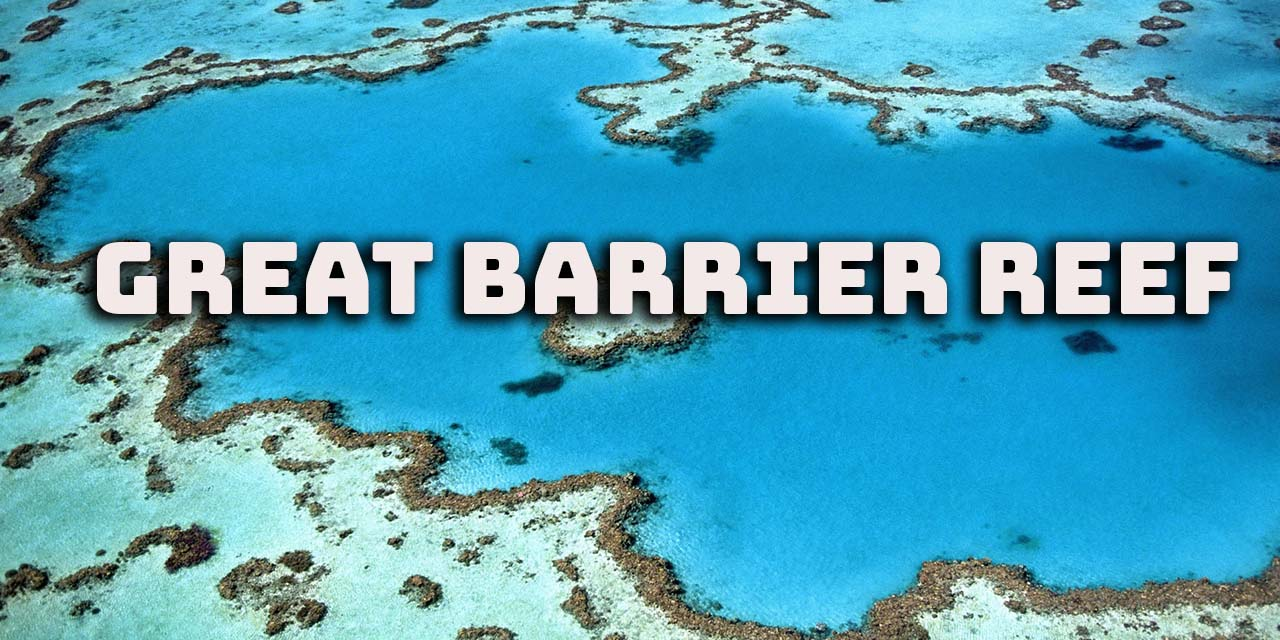 Great Barrier Reef | One of the seven wonders